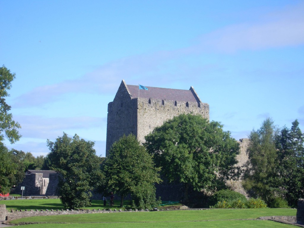 Athenry castle from the south