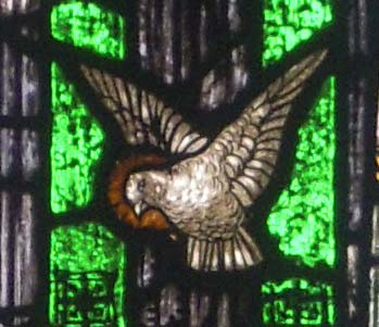 dove of St Columbkille