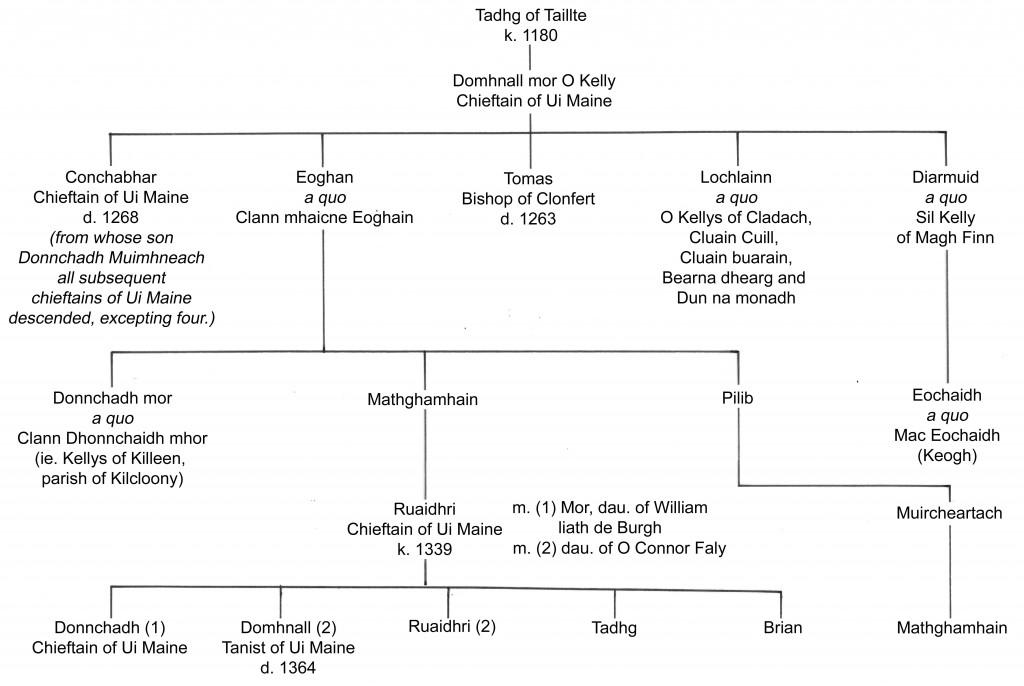 Pedigree of the medieval Clann mhaicne Eoghain
