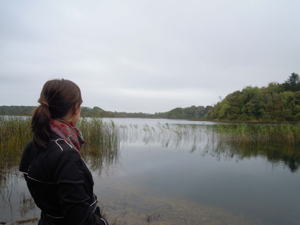 The Lake, Kilronan