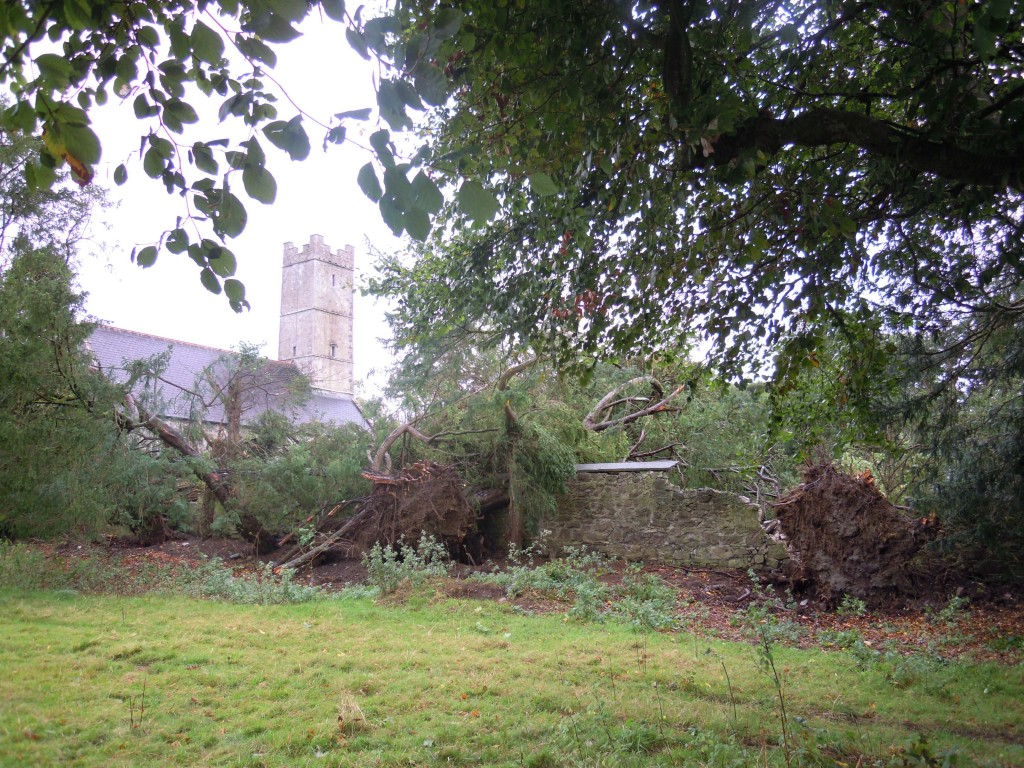 Clonfert Cathedral and fallen trees from the avenue to the Bishop's Palace